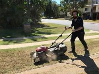 property maintenance mackay lawn mowing services gardening