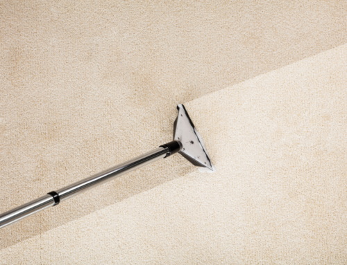Carpet cleaning will extend the life of your carpet