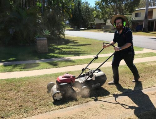 Hire a lawn mowing specialist versus do it yourself