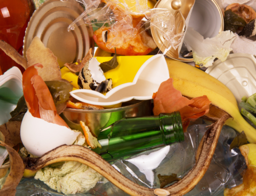 Guide to household waste disposal in Mackay for 2021