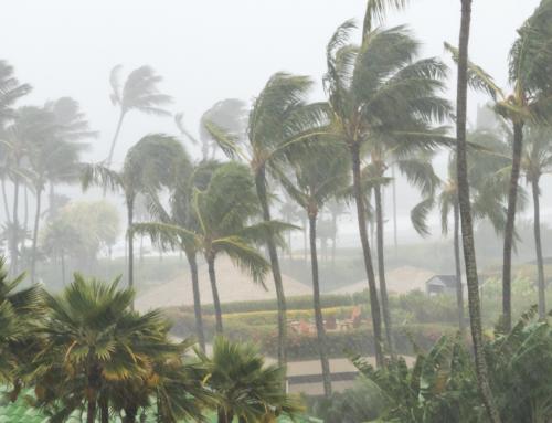 How to start preparing for cyclone season